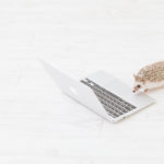 アフィリエイトをはじめやすいブログ