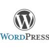 【WordPress】投稿IDとカテゴリーなどのIDを調べる方法 | きらり☆彡
